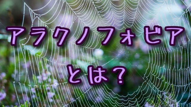 アラクノフォビア(クモ恐怖症)とは?