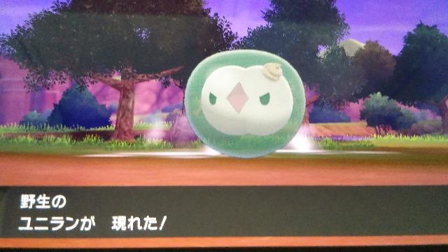 ポケモン(ソード/シールド)「ユニラン」